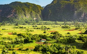 Picture greens, the sun, trees, mountains, palm trees, rocks, field, valley, house, Cuba