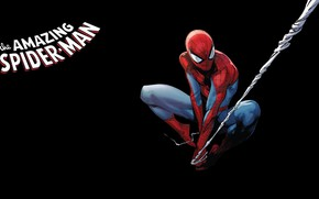 Picture spider-man, comic, spider-man, Marvel Comics