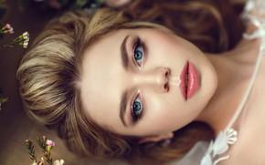 Picture eyes, face, blonde, lips, Hakan Erenler