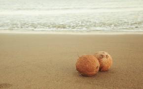 Picture sand, sea, wave, beach, waves, beach, sea, sand, coconuts, coconuts