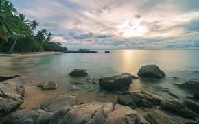 Picture sea, beach, landscape, tropics