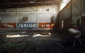 Picture sport, hall, CSKA, Dynamo, ska