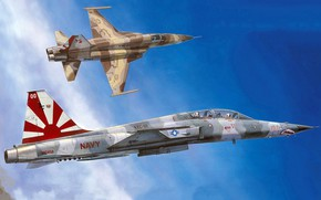 Picture Tiger II, Freedom Fighter, Northrop Corporation, the second generation F-5, American light multi-role fighter, squadron …