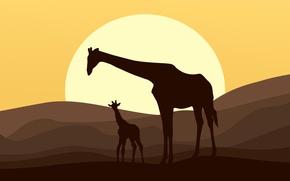 Wallpaper sunset, the sun, silhouette, vector, animals, Jira