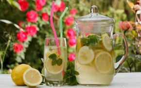 Picture Lemon, Drink, Mint