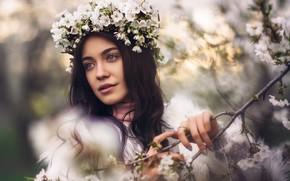 Picture girl, flowers, branch, spring, brunette, flowering, wreath, flowers, bokeh, Chavdar Dimitrov