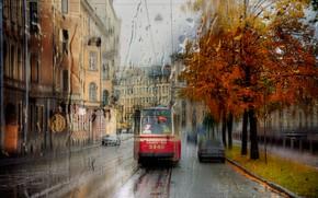 Picture rain, Saint Petersburg, tram