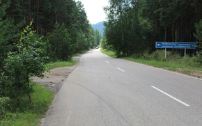 Picture Nature, Road, Forest, Upland
