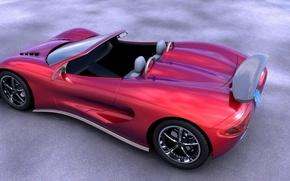 Picture sport, Roadster, Scorpion, Ronn Motor