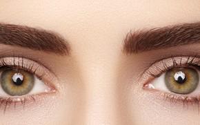 Picture brown eyes, eyes, eyelashes, eyebrows