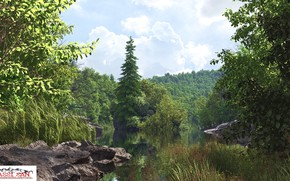 Picture water, lake, stones, shore, hidden lake