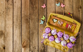 Wallpaper butterfly, spring, Easter, wood, spring, Easter, purple, eggs, decoration, Happy, the painted eggs
