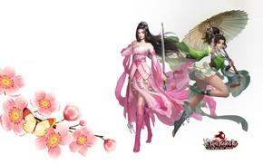 Picture flowers, umbrella, girls, the game, art, Swordsman Mobile
