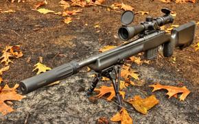 Wallpaper Daniel Defense, rifle, optics