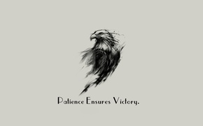 Picture Eagle, minimalism, background, Victory, quote, Patience, simply background, Ensures, motivational