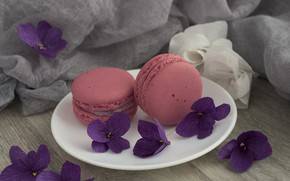 Picture flowers, cakes, violet, macaroon