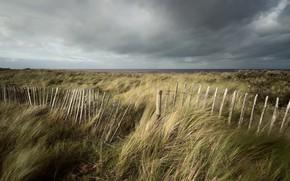 Picture sea, shore, the fence