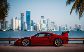Wallpaper the city, Ferrari, F40, Florida, morning, Miami