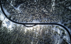 Wallpaper winter, road, forest, light, nature, shadows, the view from the top