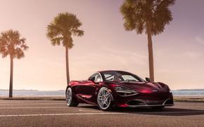 Picture palm trees, McLaren, supercar, 2018, MSO, 720S