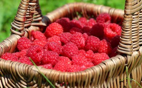 Wallpaper beauty, nature, cottage, berries, delicious, raspberry, harvest, summer, vitamins, basket, berry