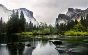 Wallpaper forest, mountains, river, USA, California, Yosemite National Park, Mariposa
