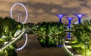 Picture night lights, Singapore, Singapore, night lights