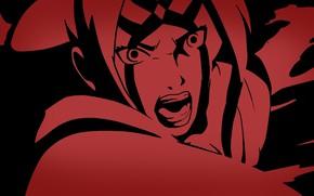 Picture game, Naruto, anime, ninja, asian, manga, shinobi, Naruto Shippuden, oriental, asiatic, Tsunade, kunoichi, japonese