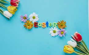 Picture Flowers, Spring, Tulips, Easter, Letters, Holiday, Chrysanthemum