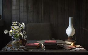 Picture autumn, flowers, comfort, tree, mood, calm, books, lamp, chamomile, dust, peace, so