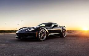 Picture Z06, Corvette, Chevrolet, Chevrolet Corvette Z06