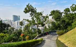 Picture the sky, the sun, trees, home, China, the bushes, Macao