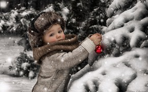 Picture winter, snow, toy, tree, boy