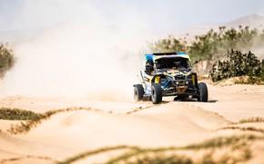 Picture Sport, Desert, Speed, Rally, Dakar, Dakar, Rally, 356, Buggy, Buggy