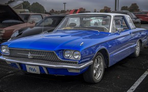 Picture 1966, Thunderbird, FORD