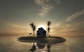 Picture house, palm trees, island, Kame House
