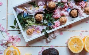 Picture flowers, box, lemon, chocolate, candy, wood, dessert