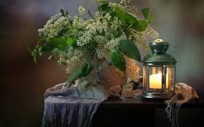 Picture lamp, vase, cherry