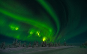 Picture winter, road, forest, the sky, snow, trees, night, stars, Northern lights, Russia, Siberia, Yakutia