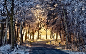 Wallpaper winter, road, morning