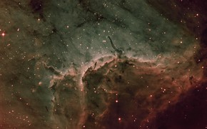 Picture in the constellation, Swan, Pelican nebula, Pelican Nebula