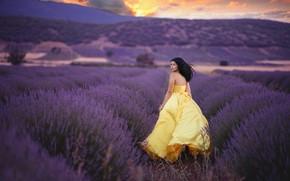 Picture field, girl, joy, dress, lavender
