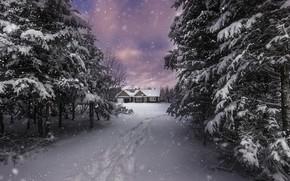 Wallpaper winter, snow, house, nature