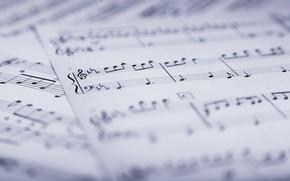 Wallpaper notes, music, music, leaves, sheet music