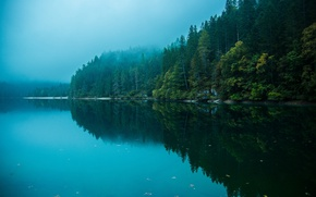 Picture forest, the sky, water, reflection, trees, nature, lake, river