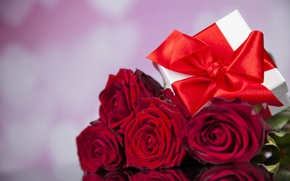 Wallpaper red, love, romantic, gift, roses, red roses, valentine`s day