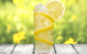 Picture ice, glass, lemon, Board, drink, blur, lemonade