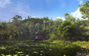 Picture lake, shore, vegetation, structure, the cabin
