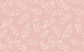 Wallpaper pattern, texture, Background, feathers