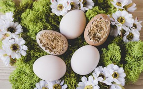 Picture Flowers, Easter, Eggs, Moss, Hay, Holiday